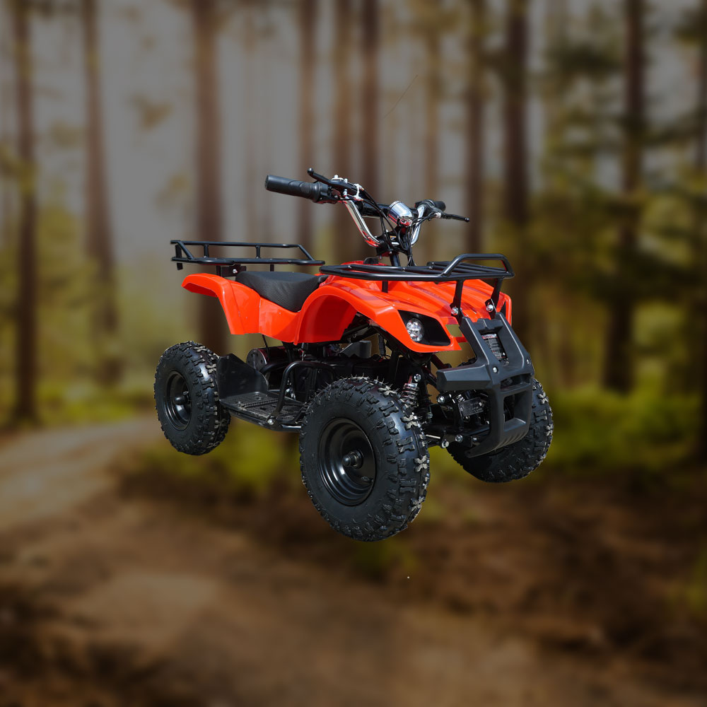 electric quad bikes for adults